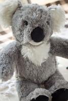 Free shipping Retail 1PCS Build a bear Large grey koala doll gift plush toy 1