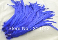 "Free Shipping 100pcs/lot 12""-14"" Royal Blue Rooster/Cock Tail feathers  for Costumes"