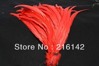 Free Shipping 100pcs/lot 12-14inch(30-35cm) Red  Cock tail COQUE TAIL rooster tail feather Loose for Hats or Costumes