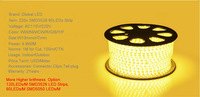 free shipping 20m/lot warm white smd 3528 led 110v strip light + Plug US standard 60leds/M