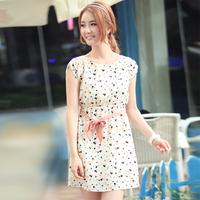 2013 Hitz Korean Women Floral Chiffon Slim Dress