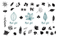 Promotion waterproof Tattoo Stickers The leaves tattoo paste tattoo stickers Design Drawing Make Up Sticker
