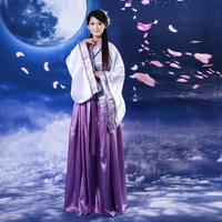 Hanfu costume female  clothes tang suit han fu princess miss Ru skirt