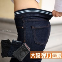 Stella free shipping 2013 plus size jeans female mm high waist straight jeans female jeans trousers elastic pants