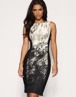Free shipping Hot-selling elegant 2013 serpentine pattern print cotton waist one-piece dress dj077  +gift
