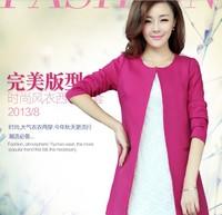 Female 2013 autumn blazer women's all-match slim medium-long suit female outerwear