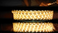 Wholesale Free ship 5m LED 3528 SMD 110V gel light 60 led/m, WATERPROOF LED strip white/warm white/blue/green/red/yellow