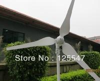 Free shipping 100w wind generator windmill,wind turbine,high quality,CE,ROHS,ISO9001,12VDC,12VAC,24VDC,24VAC