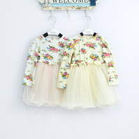 Free Shipping 4Pcs/lot Children Girl 2013 Autumn Newest Flower Tutu Dress Baby Fashion Elegant Tule Dress 80 90 100 110