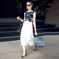 Free Shipping 2013 Women's Fashion Star Chiffon One-Piece Dress Slim Chiffon Full Dress