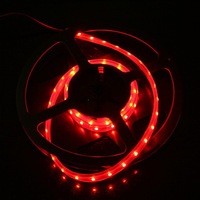 IP66 Waterproof 1M SMD 3528 LED Strip Light 60 LED Red DC 12V 4.8W