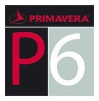 Primavera P6 project management software program V6.0/V7.0, English / Multilanguage