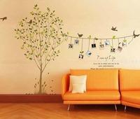 Cheap Cartoon Animal tree bird photo life PVC Wall Sticker ,Wall Decal , Room Sticker, House Sticker Free Shippinglm8001
