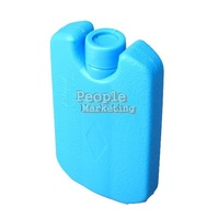 Mini Ice Brick Freezer Tool Outdoor Travel Lunch Bag Box Cooler Cool Pack P4PM
