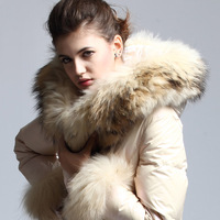 2013 autumn and winter slim thickening big raccoon fur down coat female long design fur coat