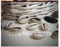 2x1.2cm multi-functional shell white DIY Accessories decoration pearl beads for /necklace/garmetn/bracelet/home/gift