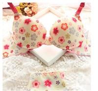 Big Discount 2014 New Fashion Women Sexy Push Up Floral Printed Padded Bra Set 32AB-38AB Lady Underwear Set Free Shipping