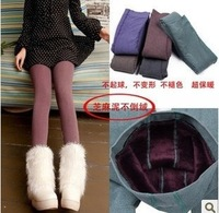Trend Knitting Free shipping HOT SALE 2013 winter new High elastic thicken lady's Leggings warm pants skinny pants for women