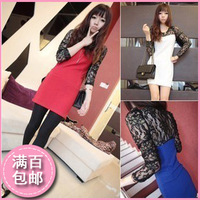 Fashion autumn 2013 autumn long-sleeve dress new arrival elegant women's