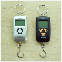 electronic mini high precision portable 45kg Double Precision Hook Fishing Weight Digital Scale express steelyard hand balance