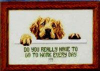 Free shipping DIY unfinished Cross Stitch kit Animal dog Tailwaggers golden retriever ZA-G494