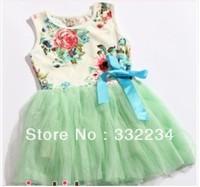 2013 summer Free shipping girl puffy dress dancing clothing princess tutu dress /children's dresses