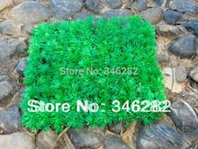 grass for garden price