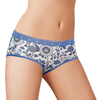 free shipping 10pcs 6454 Indian panty fiber antibiotic comfortable lace female small trunk
