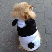dog costume promotion