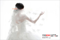 embroidered ultra long 3 meters the wedding veil train wedding dress formal dress accessories