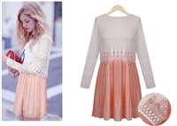New Autumn 2013 Dress Women European Style Lace Design Long Sleeve Fashion Dress For  Women 6140
