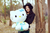 Free shipping sitting height 60 cm Hello Kitty doll, Hello Kitty, KT cat doll plush toys