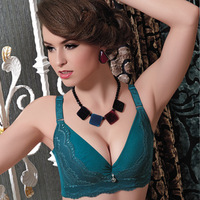 Free Shipping Sexy Lace Adjustable Full Cup Push Up Natural Side closed Back Five Hook and eye Women's Sexy Bra DLN9008