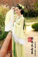 Costume fairies and clothes tang suit hanfu elegant costume tang dynasty exquisite chiffon skirt