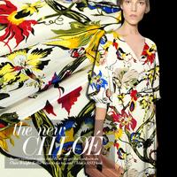 Anti-wrinkle silk crepe de chine fabric  mulberry silk  clothes 100% silk fabric