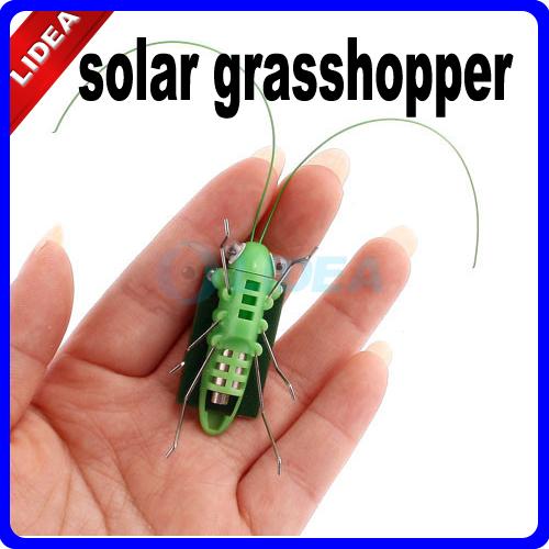 Mini Solar Toy Energy Powered Child Grasshopper Green Science Gift CN W-02(China (Mainland))