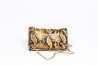 Gold Python Falabella Fold Over Gold Chain shoulder bags Crossbod Bag size 23x12x5cm  Free Shipping