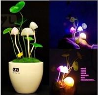 LED Mushroom lamp intelligent light sensing socket Nightlight induction socket small night light ly novelty romantic gift  free