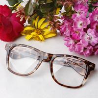 Non-mainstream big glasses frame vintage student leopard print eyeglasses men Women decoration Optical lens eye frame