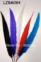 70-80cm Long Size Dyed Silver Pheasant Feathers EMS Free Shipping 100pcs/lot