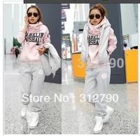 2013 New Hot Sale 3PCS Autumn&Winter Leisure Sport Hoodie Coat Vest Pant Sweat Suit Tracksuit M-XXL