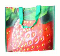 New arrival 2013 eco-friendly fashion shopping bag strawberries one shoulder casual handbag school bag sports bag