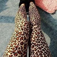 Fashion Sexy Leopard leggings Wholesale!! Free shipping