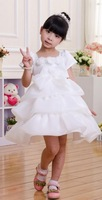 Retail 2014 Free shipping  girls princess dress, girl dress children dress , girls wedding party 2~8 ,Tutu Layered  flower dress