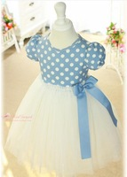 free shipping 1pcs/lot Lace children's dress free shipping C 1004