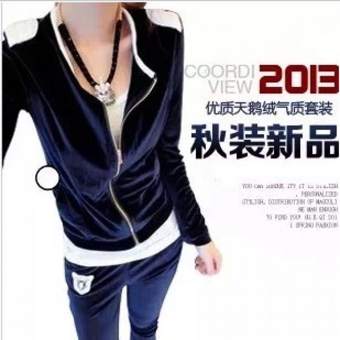 2014 Promotion Top Fasion Tracksuits Harajuku Hoodies Spring And Autumn Velvet Sportswear Set Pleuche Fashion Sweatshirt Women's(China (Mainland))