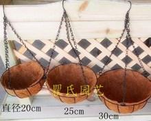 coconut hanging baskets promotion