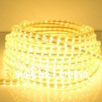 5M 20W IP67 3528 60 led 220V strip Light Waterproof 3528 SMD 300 led Strip Light white/warm white+a power plug Free Shipping