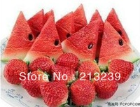Wholesales New Cartoon Watermelon/strawberry model usb 2.0 memory flash stick pen thumbdrive/novelty item