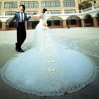 2014 lace princess wedding dress luxury long trailing wedding dress 131